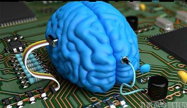 模拟人脑项目失败 科学的进步真的是一个漫长的过程